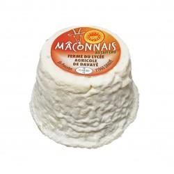 MACONNAIS - G