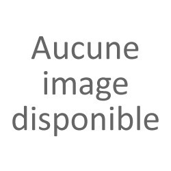 MIEL DE PRINTEMPS - 500 g